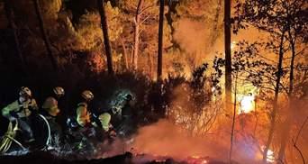 Через лісові пожежі в Іспанії евакуювали сотні людей