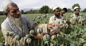 Товарами талібів є найманці та наркотики, – аналітик про втрату ВВП в Афганістані