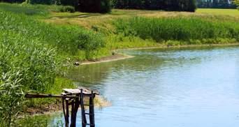 Трагедия на Прикарпатье: 3-летний ребенок погиб в пруду