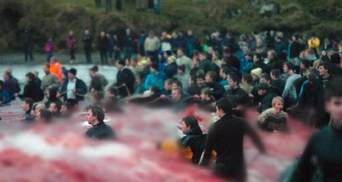 Море стало багряним: на Фарерах жорстоко вбили понад 1 400 дельфінів