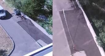 Днепрянин захватил часть двора многоэтажки: асфальтировал и поставил столбики