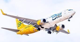 Bees Airline відкрила нові осінні напрямки: куди літатиме та за скільки