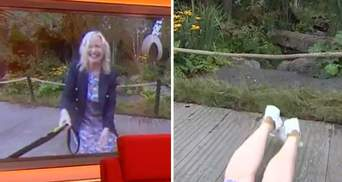 Пес збив ведучу з ніг в прямому ефірі: кумедне відео подивилися тисячі глядачів