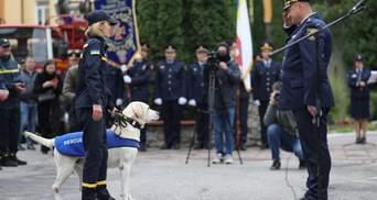 Працював у ДСНС та був кращим на чемпіонатах: унікальну собаку провели на відпочинок