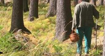 Зниклого на Львівщині грибника знайшли мертвим у лісі