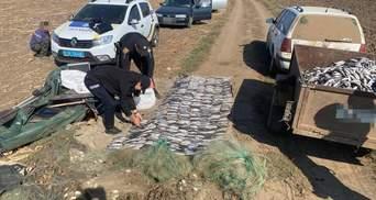 Под Одессой разоблачили рыбных браконьеров, которые нанесли государству почти 2 миллиона убытков