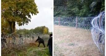 Мигранты в Беларуси штурмуют польскую границу: разрушают забор из колючей проволоки