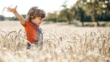 Посівний календар на травень 2021: поради, що й коли садити