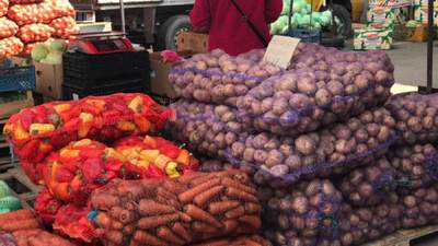 Рынок картофеля: пока украинская гниет, покупаем импортную и техническую