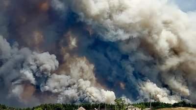 Масштабна пожежа на Луганщині: ситуація загострюється, залучили авіацію – відео, фото
