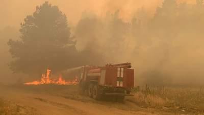 Дорога в ад: ужасные видео очевидцев и спасателей из эпицентра пожаров на Луганщине