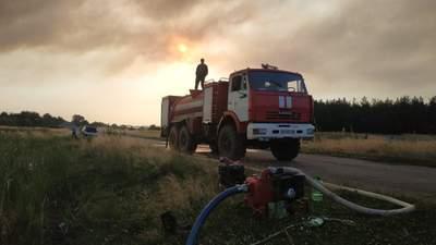 Лісові пожежі на Луганщині: залишилось кілька осередків тління – фото