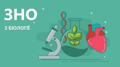 ВНО по биологии 2020: опубликованы правильные ответы