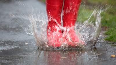Прогноз погоди на 12 червня: в Україну прийде літнє тепло, але подекуди дощі та грози
