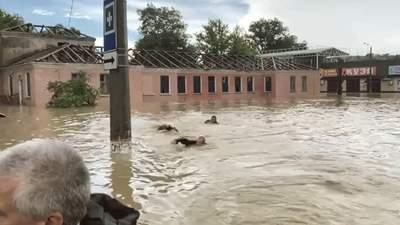 Вплавь за Аксеновым: оккупантам в затопленной Керчи не хватило лодки – курьезное видео