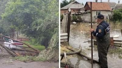 Повалені дерева і затоплені бази відпочинку: у Маріуполі та Кирилівці вирує негода