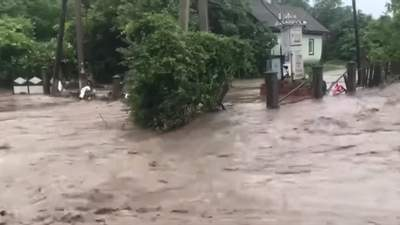 Дороги стали ріками: злива затопила десятки сіл на Буковині – відео