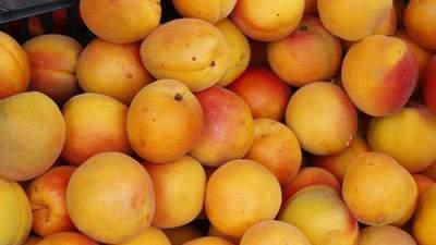 Вареники с вишней и компот из абрикоса стали роскошью: почему растут цены