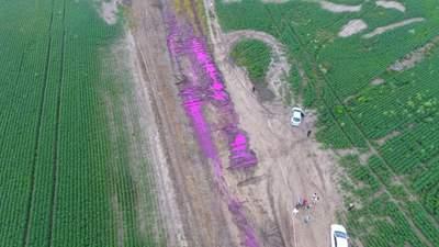 Полиция открыла уголовное дело из-за розовых луж под Ровно