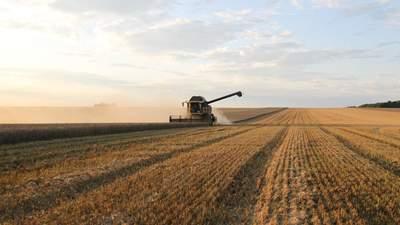 Аграрний конфлікт на Тернопільщині: люди звинувачують орендаря у фальсифікації договорів