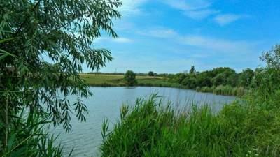 За рік в Україні потонули близько тисячі людей: страшна статистика