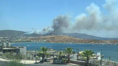 Уже локализованный пожар вновь набирает обороты в Бодруме: фото, видео