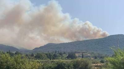 Вслед за Турцией: масштабные лесные пожары вспыхнули в соседней Греции