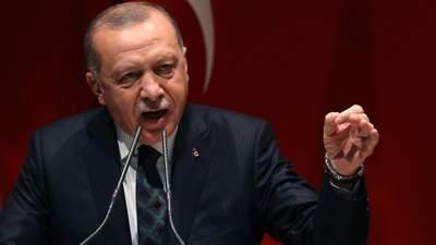 Не через спеку: Ердоган припустив, що могло стати причиною лісових пожеж в Туреччині