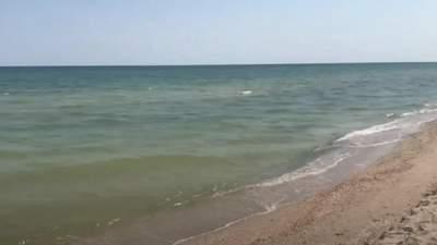 Медузы исчезли, а вода радует: туристы показали  кадры из курортной Кирилловки – фото, видео