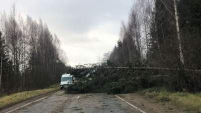 Дерева падали як сірники: Росією пронісся смертоносний ураган – відео