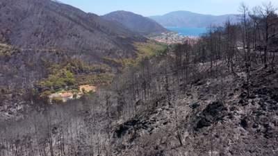 Ліси перетворились на попіл: фото наслідків пожеж у Туреччині