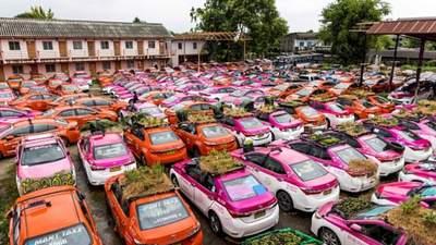 Збанкрутілі таксисти в Таїланді створили город на своїх авто: фото й відео з протесту