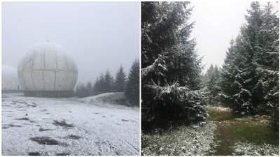 В горах на Буковине выпал снег: путешественница поделилась живописными кадрами