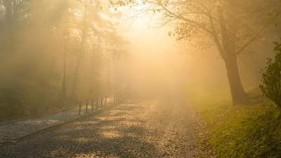 В Україні буде сонячно й сухо, однак туманно: прогноз погоди на 17 жовтня