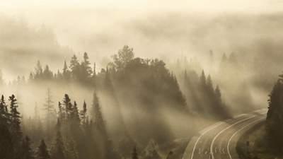 Украину окружит густой туман: в каких регионах ухудшится видимость