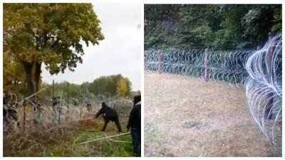 Мігранти у Білорусі штурмують польський кордон: руйнують паркан з колючого дроту