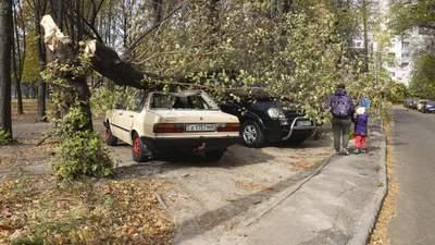 Поваленные деревья крушат авто: Днепр накрыл шквальный ветер – фото последствий