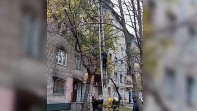 Залезла на высоту четвертого этажа: спасатели Никополя снимали с дерева беременную женщину