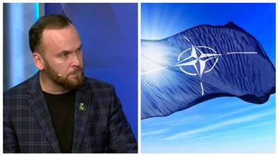 Украина может не только просить защиты у НАТО, но и предлагать помощь, – эксперт