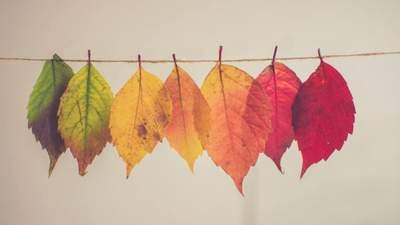 Сонячна осінь продовжується: прогноз погоди на 26 жовтня