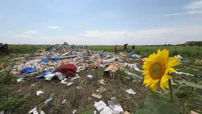 Росія залякує адвокатів родичів жертв катастрофи MH17