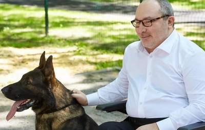 В Харькове выставку собак посвятят памяти Кернеса