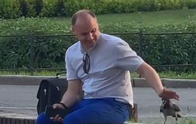 Чоловік ніжно гладить ворону: киян розчулило миле відео