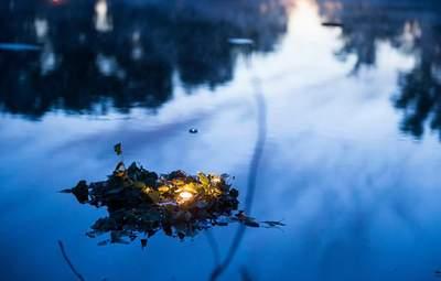Пройшли стихію води і вогню: на Хортиці прихильники язичницьких вірувань відзначили свято Купала