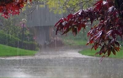Прогноз погоди на 1 липня: другий місяць літа розпочнеться зі спеки, дощів і гроз