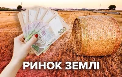 Ринок землі відкрився: скільки зароблять власники землі та держава