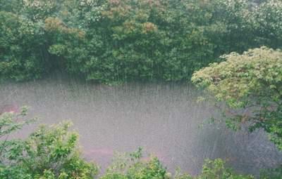 Прогноз погоди на 5 липня: грози не відступлять, але буде тепло