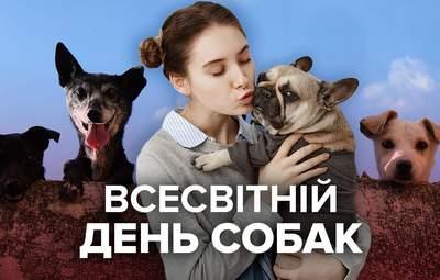 Міжнародний день собак: 5 причин завести улюбленця