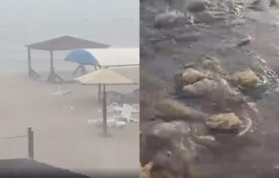 Пляжи курортного Бердянска после мощного шторма засыпало медузами – видео