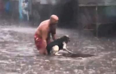 """""""Головне залишатися людиною"""": подробиці порятунку собаки у Києві, який підірвав мережу"""